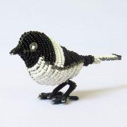 Chickadee-01